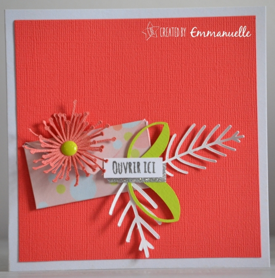 "Carte d'anniversaire ""message caché"" Juillet 2016 