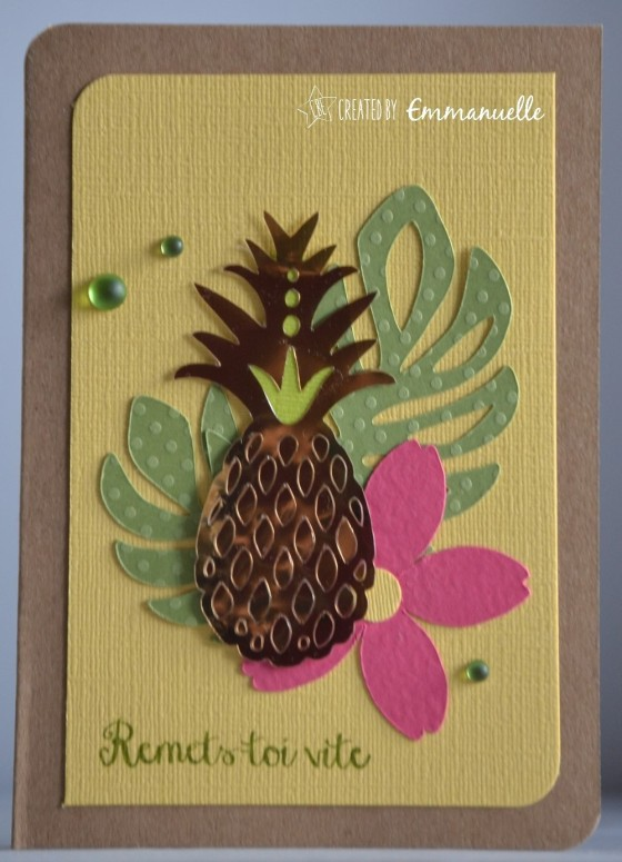 "Carte de rétablissement ""ananas"" Août 2016 