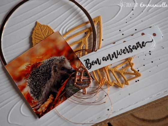 "Carte d'anniversaire ""hérisson"" octobre 2019 