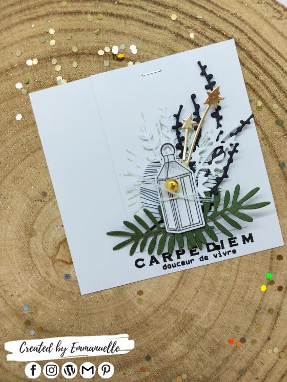 "Mini-carte ""Carpe diem"" Janvier 2021 | Created by Emmanuelle"